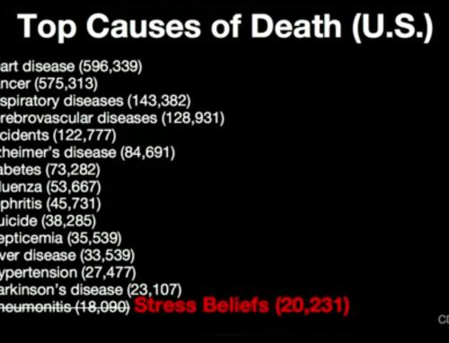 De kruistocht tegen stress: onvoorziene consequenties