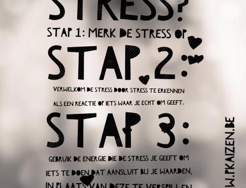 Omgaan met stress: 3 stappen